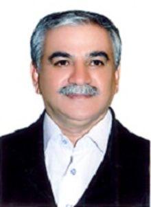 Hamid Reza Hamidi